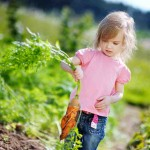 The Dirtiest Fruits & Vegetables | The revised Dirty Dozen list 2014