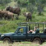 Exclusive interview | Tristan Voorspuy, owner and founder of Offbeat Safaris Ltd, tells us all there is to know about Safaris in Africa and his passion in animal conservation and wildlife